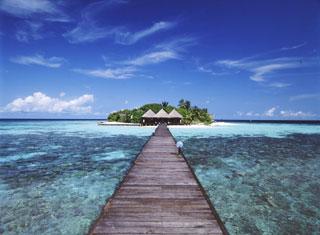 楽園のイメージ像